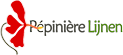 Plante corse Logo